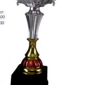 copa de premiacion 490 santiago chile deportes