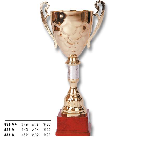 trofeo de premiacion winner blas 68 A santiago chile deportes