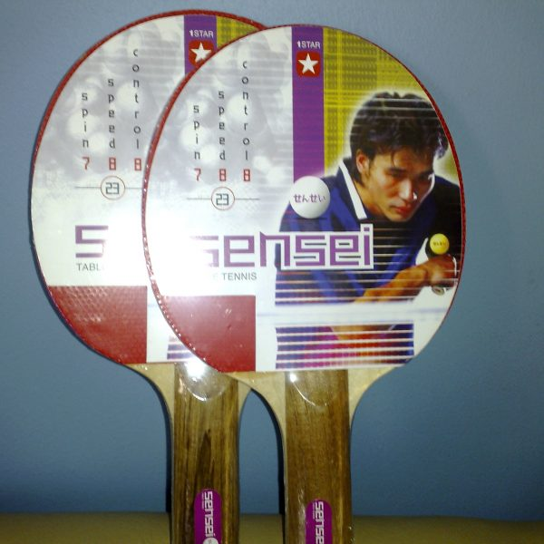 paleta ping pong sensei santiago chile deportes